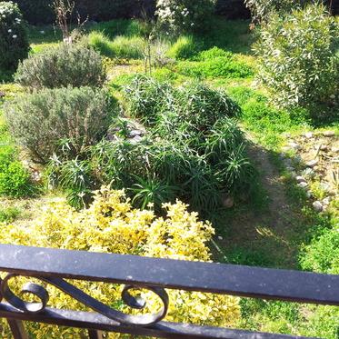 Aménager votre jardin avec un paysagiste professionnel